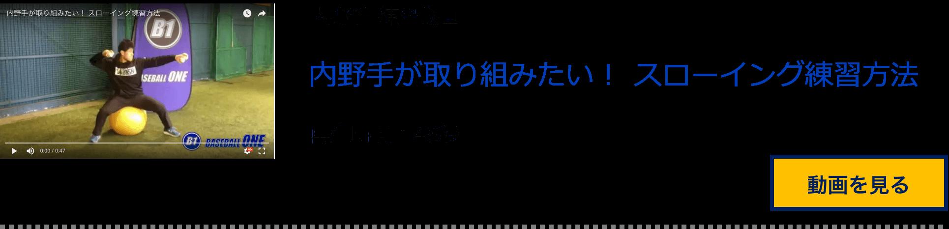 n11 (1)